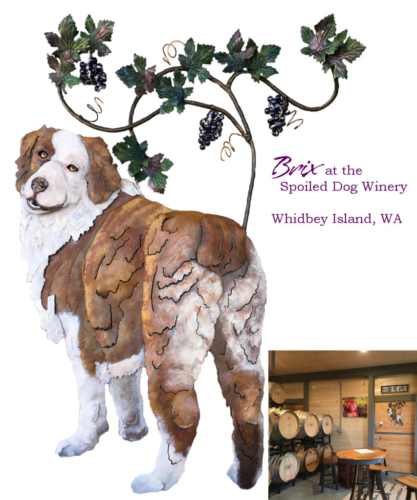 dhSeadragon Brix the Super Sweet Winery Dog